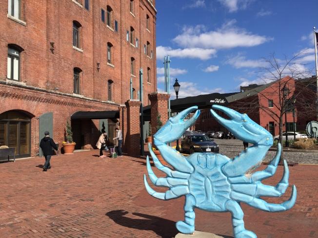 菲爾斯點的濱河步道邊建有多家旅店,馬州特產藍蟹是友誼標誌。(特派員許惠敏/攝影)
