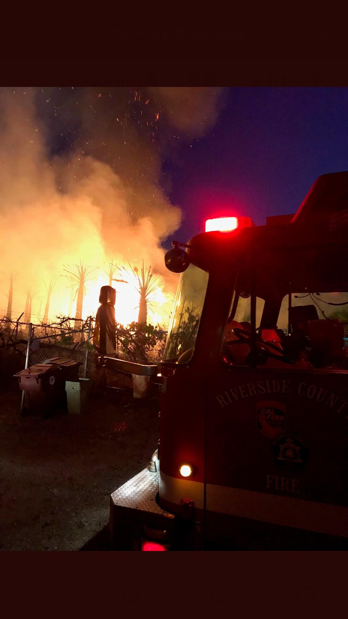 河濱縣科奇拉15日(周日)上午,在棕梠樹林發生野火,所幸並未對鄰近地區正舉行的科奇拉音樂藝術節造成影響。(Cal fire Riverside推特)