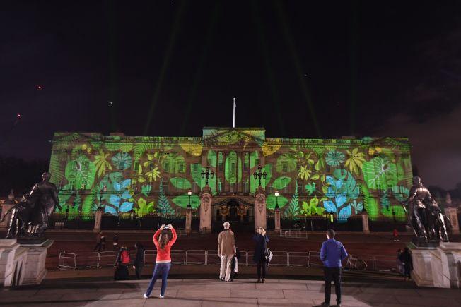 英國白金漢宮15日晚間舉行燈光秀,將光影投射在白金漢宮正面,變身熱帶雨林。Getty Images