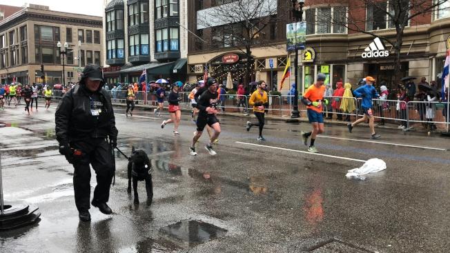 2018波士頓馬拉松進行嚴密安保,跑道中警員帶著警犬沿路巡邏確保安全。(記者劉晨懿之/攝影)