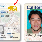 今年起 加州駕照不論身分都同一版本