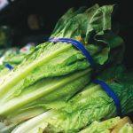 醫藥短波 | 少吃生菜 防染大腸桿菌