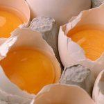 別怕吃蛋!新研究:一周一打 不會提高膽固醇