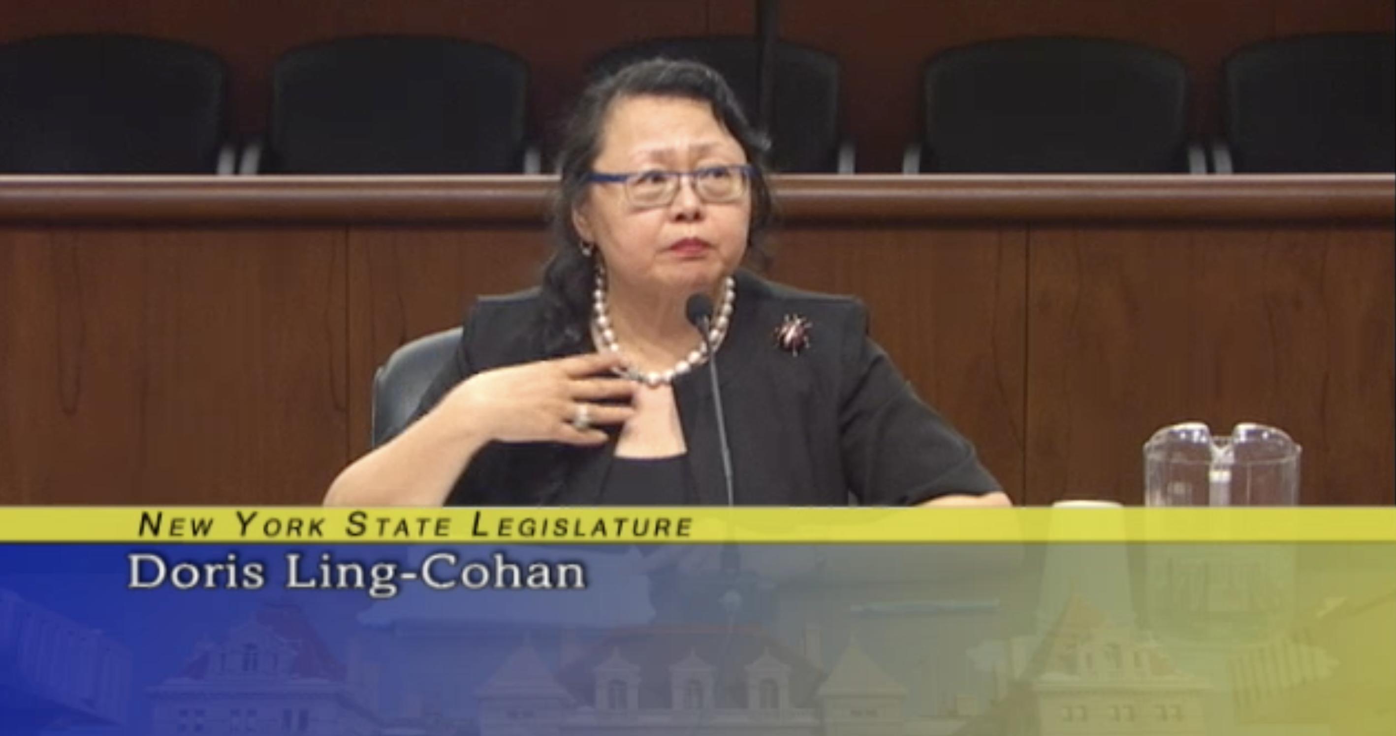 凌德麗在州議會參加州檢察長面試。(視頻截圖)