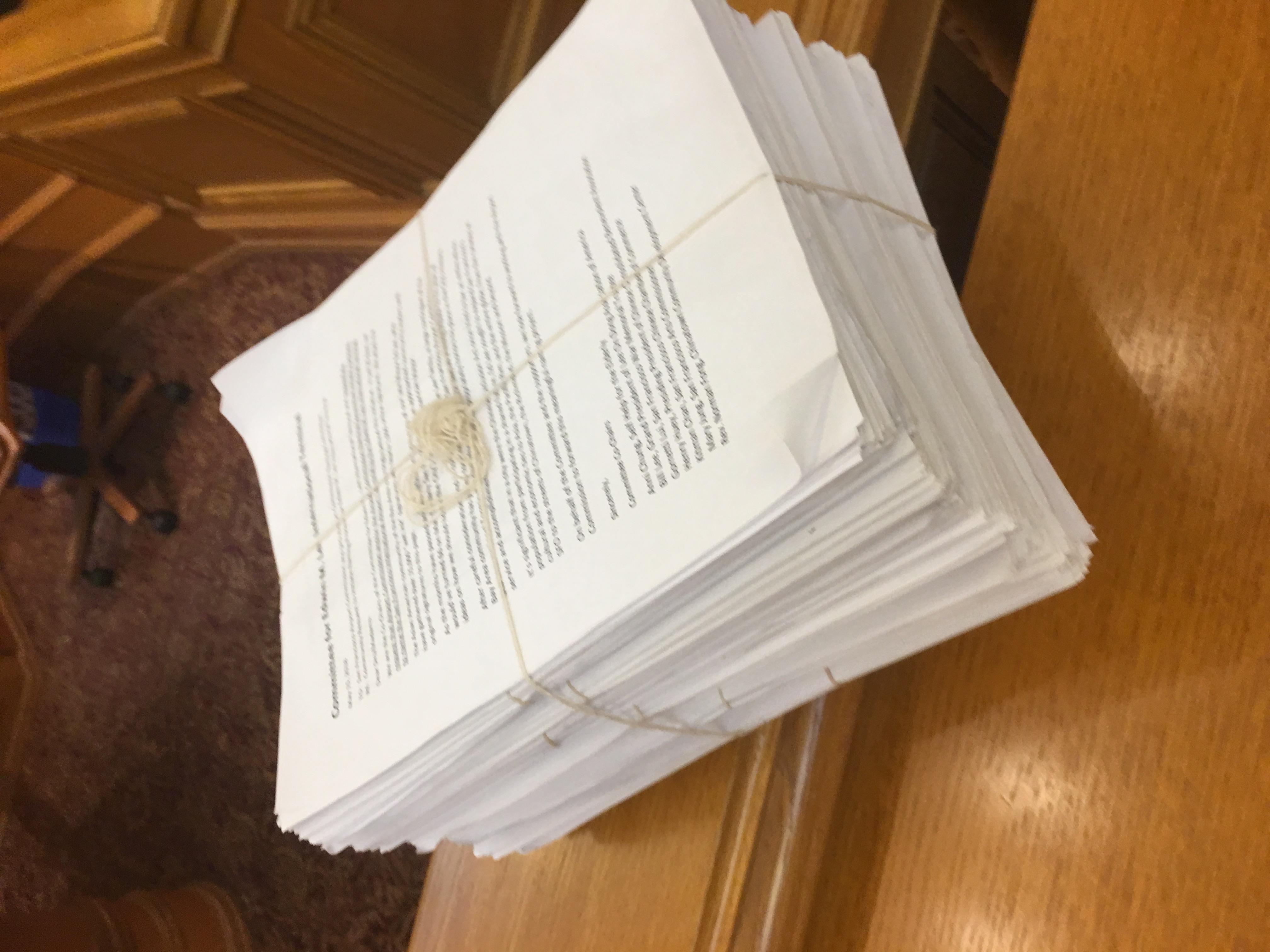 華裔僑領們提交了厚厚一疊的簽名給機場委員會。(記者李晗╱ 攝影)
