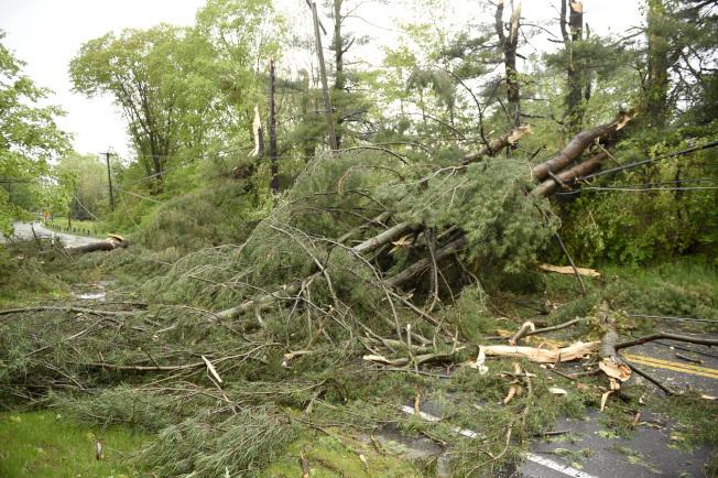 康州Bridgewater, Conn的主要道路因倒塌路樹封閉。美聯社