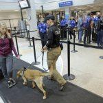 旅客在機場「不乖」小心被列祕密黑名單