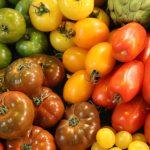 每天吃2個番茄 增加肺功能 可預防肺病