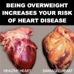 研究:垃圾食物放駭人警示圖片 可改善民眾飲食習慣