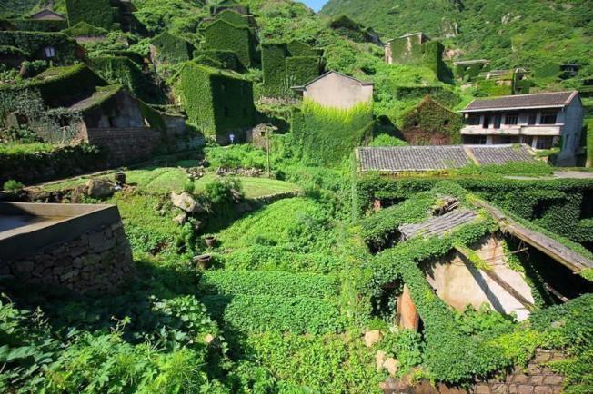 中國浙江後龍灣村因為荒廢而形成自然景觀。(取材自壹讀)