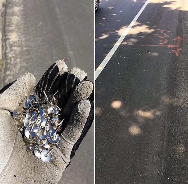 牛頓市單車道上滿是圖釘,引起重視。(取自臉書)