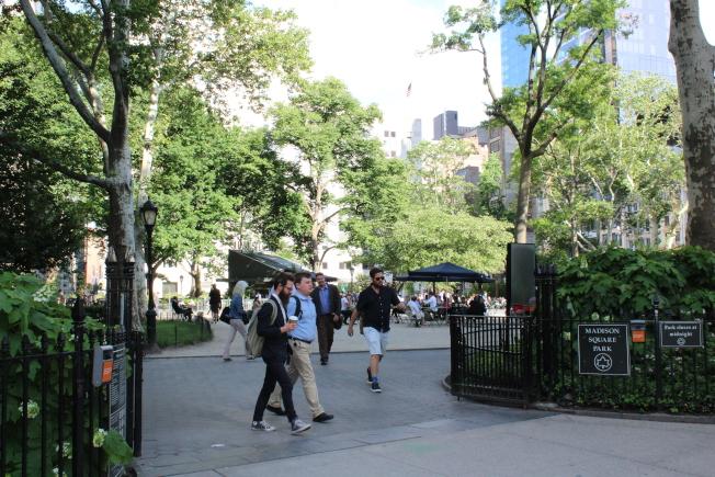 麥迪遜廣場公園是寶貴的城市綠洲。(記者劉大琪/攝影)