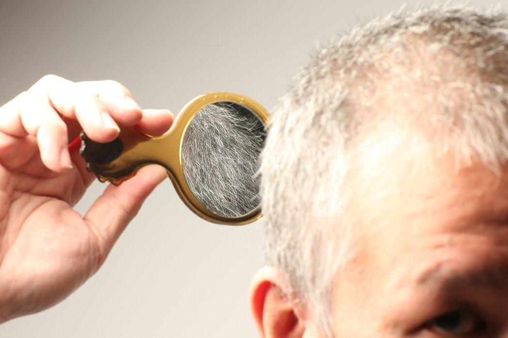 許多銀髮族都希望成為「黑髮族」,看到白髮不是拔掉就是乾脆整頭染黑。 記者陳立凱/攝影