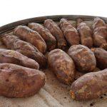 烤地瓜、紫米飯…6種天然食物 並不如你想的健康