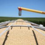 北京釋善意 向美買稻米
