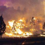 北加大火一夜焚地1.4萬畝