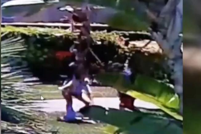 只有18個月大孩子(前方地方)被自己的父親從空中摔到地上。(記者楊青截圖)