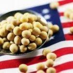 中國已取消61.5萬噸美國大豆訂單