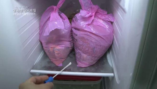韓國一名家庭主婦因覺得天天倒垃圾太麻煩,竟想出奇招,將垃圾塞進冰箱中。圖/取自「生老病死的秘密」
