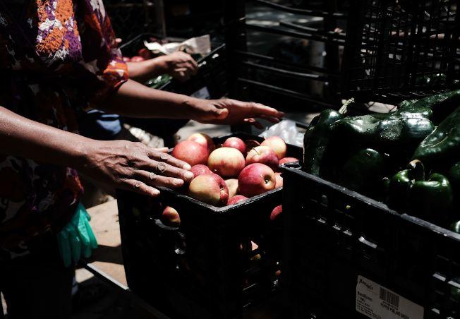 一名男士在紐約布朗士一處免費食物庫把蘋果裝入籃內。(Getty Images)