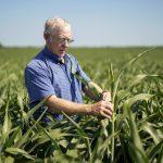 美中貿易戰╱關稅報復未至 農產品先「跳價」