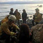 俄勒岡州女子 駕車墜落大索爾山崖7天後獲救
