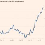 美中貿易戰大贏家:巴西黃豆溢價幅度創4年高點