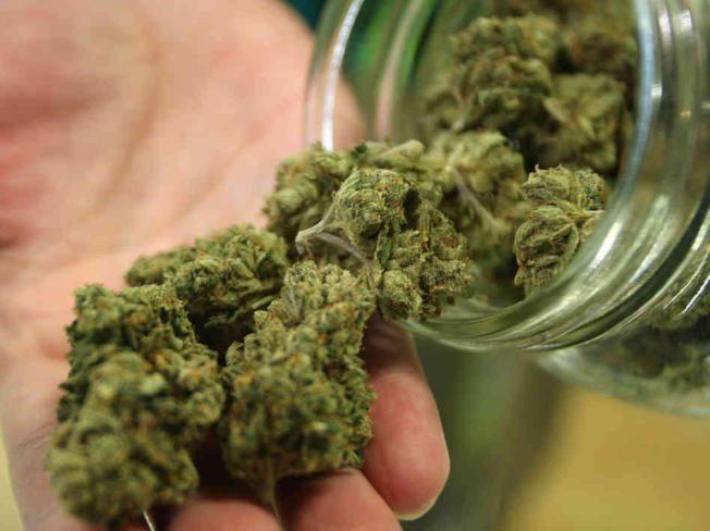 新州第一 澤西市大麻除罪化