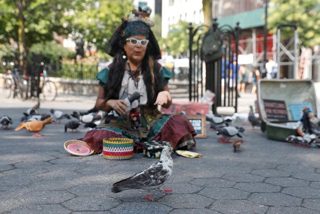 美國法律保護鴿子。圖為曼哈頓一個自稱「鴿子媽媽」(Mother Pigeon)的人出售鴿子模型。(路透)