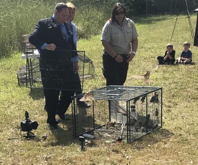 聯邦探員檢查盜獵的鳥類。(Phil Kloer, USFWS)