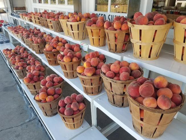 「心情農夫市場」採收的桃子。(取自臉書)