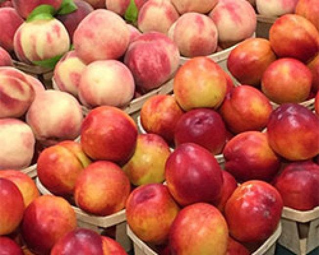 Demarest農場有12種品種的桃子。(取自臉書)