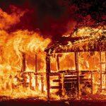 今年第5位! 山火救火員 又1人喪生