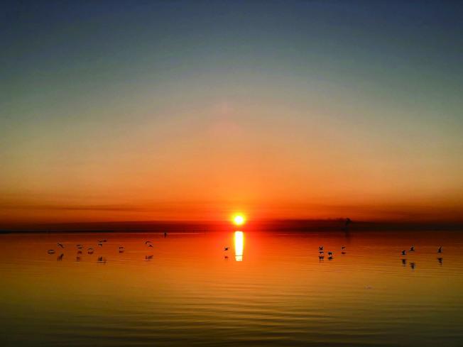 海邊的日出。(盧秋瑩.圖片提供)