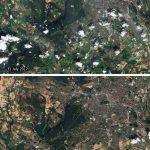 德國熱到衛星照變色 柏林綠地變赤地