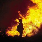 北加沙士達大火3天焚4萬畝