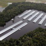 颶風佛羅倫斯引洪患 美200多萬隻雞溺斃