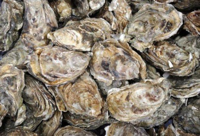 牡蠣可能會是下一個可以開發的遠海養殖商品。(Catalina Sea Ranch)