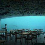 世界最大水底餐廳「Under」 一窺北歐祕境