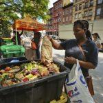紐約客受不了老鼠、蟑螂、惡臭 廚餘回收喊停