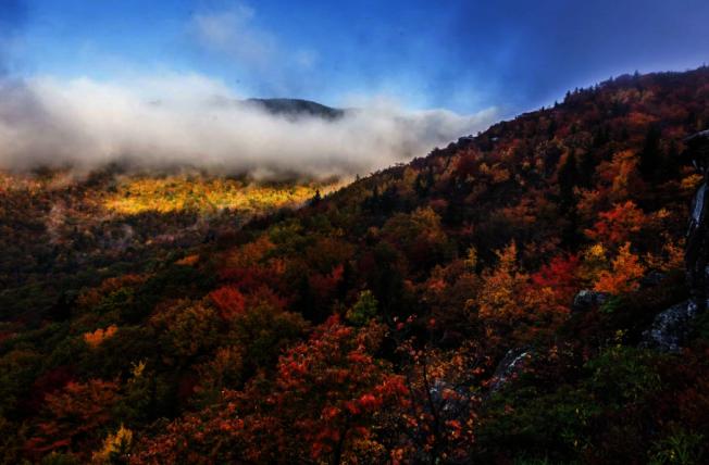 Blue Ridge Parkway附近美麗的秋季景色。(取自visitnc.com)