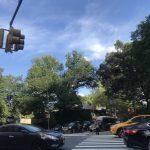 曼哈頓林肯廣場 文化重鎮 千禧世代鍾愛區