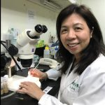 癌細胞「逆境求生」 專家發現祕密