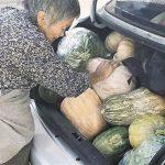 十一收假曬母愛⋯行李塞滿食物