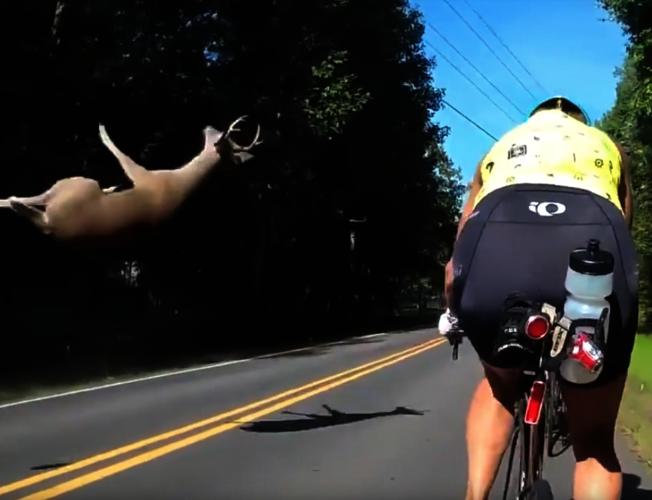 美國北卡羅萊納州,一群單車騎士在4日完成一場訓練行程後,返回途中目睹一隻鹿從自己眼前竄出,驚險躲過自己車隊後,卻慘遭對向來車撞飛。圖片擷取YouTube/Peter Flur影片