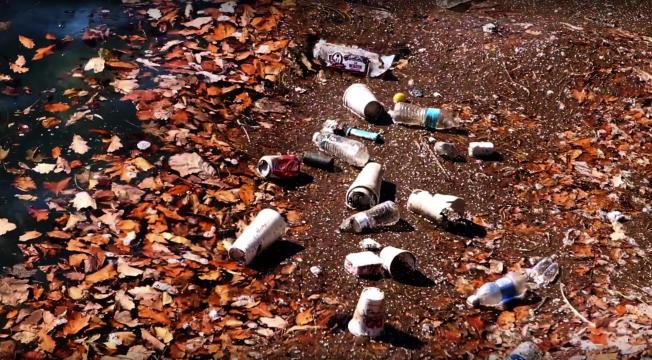 吸管危害海洋生物 芝水族館推動禁用