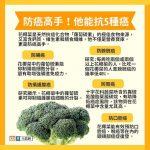 防癌高手!花椰菜能抗5種癌 專家教你怎麼挑