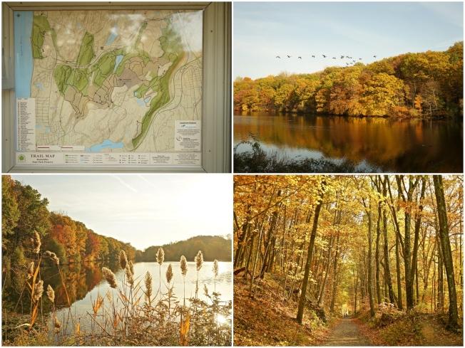 洛克菲勒州立公園保護區內有40條健行步道,其中繞著天鵝湖的Brothers' Path的景色美如畫作。