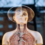 女性3大癌奪命 早篩檢降風險