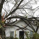 4級颶風麥可登陸  佛州已傳1死